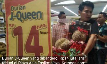 Alhamdulillah! Warga Tasik pada Tajir, Harga Durian Rp14 Juta Aja Dibeli
