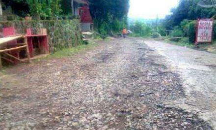 Warga Desa Wargaluyu Keluhkan Kondisi Jalan yang Rusak Parah