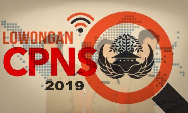 Kementerian dan Pemerintah Daerah Sudah Umumkan Hasil Administrasi CPNS 2019, Cek di Sini