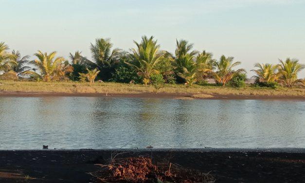 Cantigi, Asal Muasal Nama Objek Wisata Karang Tirta Pangandaran