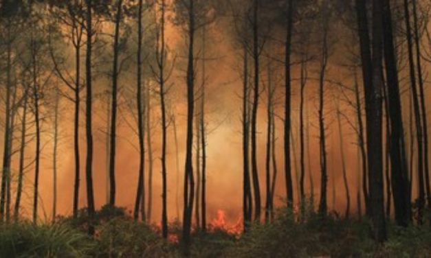 Gunung Ciremai Terbakar Hebat, Lima Pendaki Dilaporkan Belum Turun