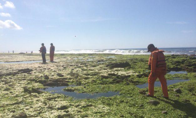 Korban Hilang di Perairan Pangandaran Belum Ditemukan, Tim SAR Lanjutkan Pencarian