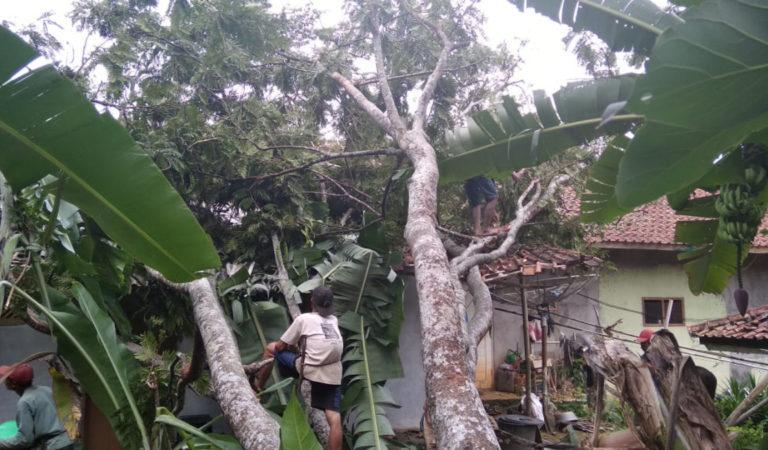 Hujan Angin di Ciamis Tumbangkan Pohon, Atap Rumah Septiadi Hancur