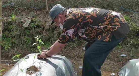 pertanian pangandaran